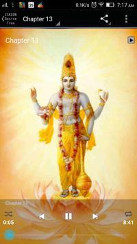 Bhagavad Gita Marathi Audio screenshot 11