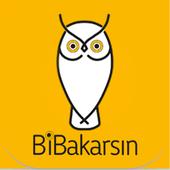 Bibakarsin.com icon
