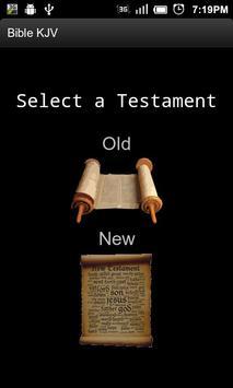 Bible KJV poster