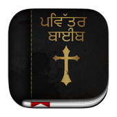 Punjabi Bible icon