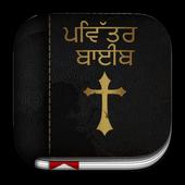 Punjabi Bible icon