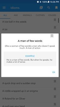 English Idioms, Phrases, Slang and Common Verbs screenshot 3