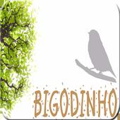Canto de Bigodinho HQ icon