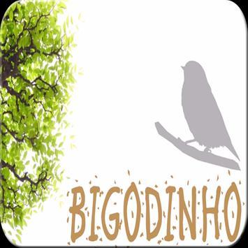 Canto de Bigodinho HQ poster