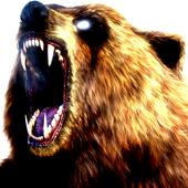 Big Bear ONline camera icon