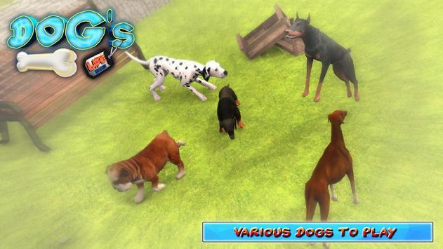 DOGS LIFE : Free Dog Games screenshot 4