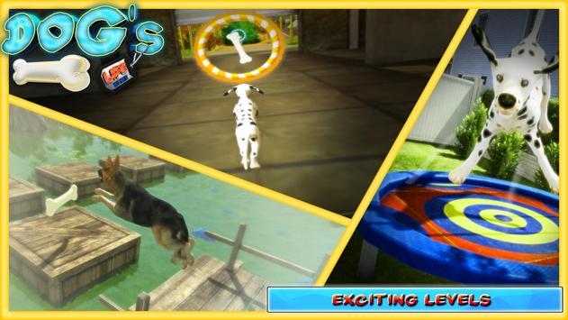 DOGS LIFE : Free Dog Games screenshot 8