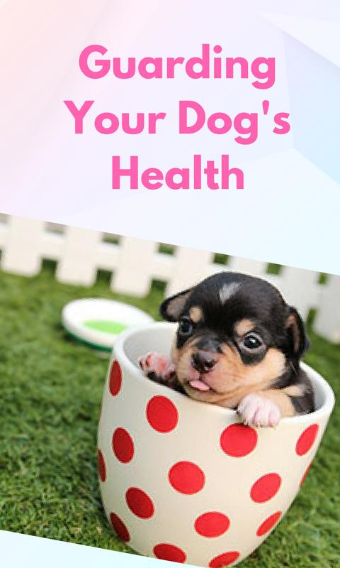 Help for sick dogs & sick puppies for android apk download.