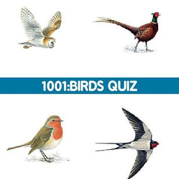1001: Birds Quiz poster