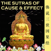 Cause&Effect Sutra 三世因果经 icon