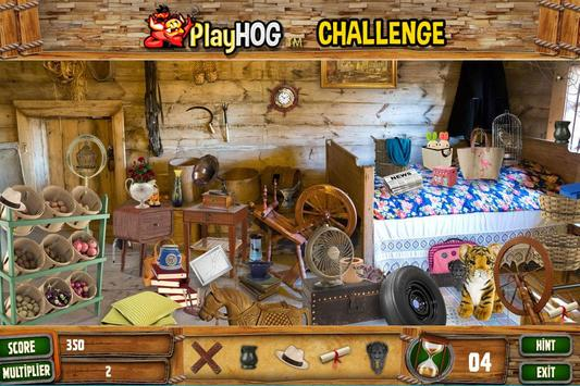 Hidden Objects Cabin in the Woods Challenge # 308 poster