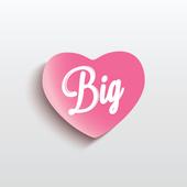 Big Wedding News icon