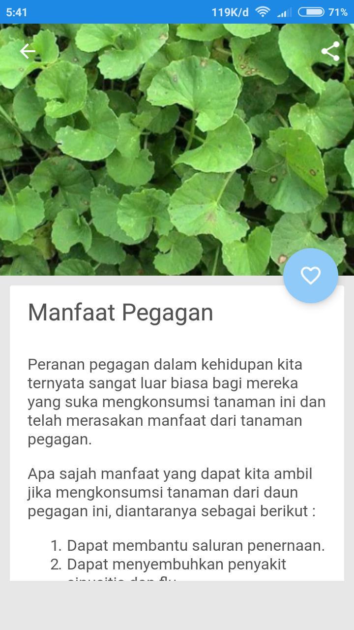 Manfaat Daun Pegagan For Android Apk Download