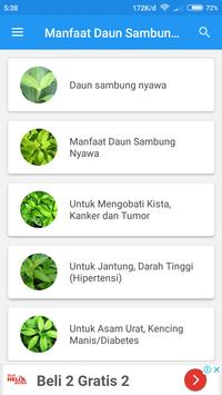 Manfaat Daun Sambung Nyawa screenshot 1