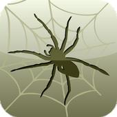 Spider in da house icon