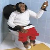 Funny pics monkeys icon