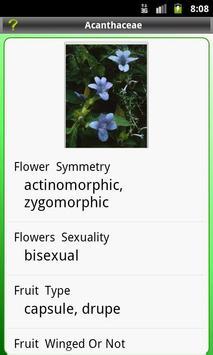 Key: Plant Families apk screenshot
