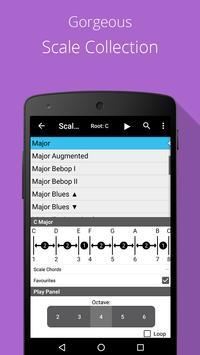Piano Chords, Scales, Progression Companion PRO Ekran Görüntüsü 4