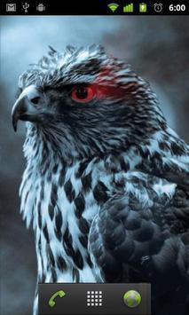 bird of prey live wallpaper apk screenshot