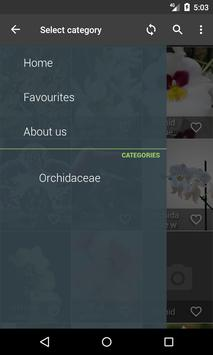 Orchidaceae Wallpapers apk screenshot