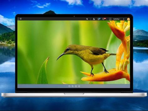 Bird Wallpaper screenshot 4