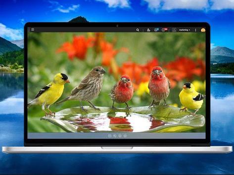 Bird Wallpaper screenshot 5