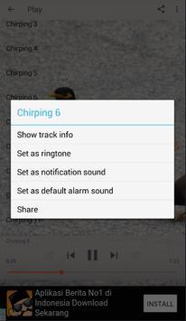 Chirping Common Myna screenshot 2