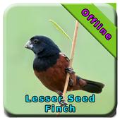 Lasser Seed Finch icon