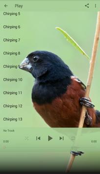 Lasser Seed Finch apk screenshot