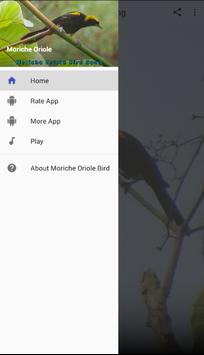 Moriche Oriole apk screenshot