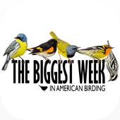 Biggest Week in Am. Birding ikona