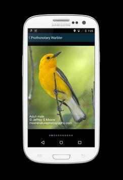 Biggest Week in Am. Birding screenshot 4