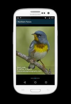 Biggest Week in Am. Birding screenshot 3