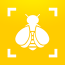 Bumble Bee Watch APK