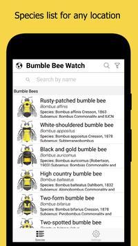 Bumble Bee Watch 海报