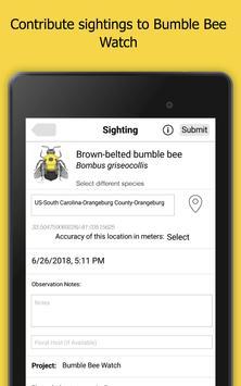 Bumble Bee Watch 截图 13