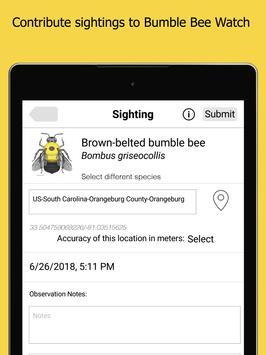 Bumble Bee Watch 截图 8