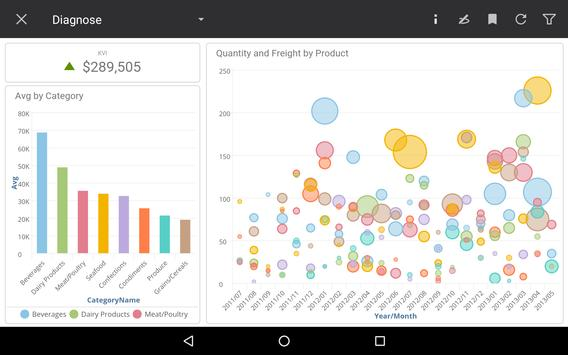 Birst Mobile Analytics apk screenshot