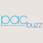 PacBuzz icon