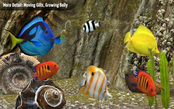 MyReef 3D Aquarium apk screenshot