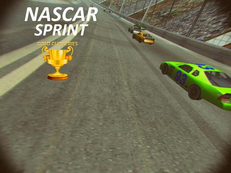 Nascar Sprint Gold Cup 3D screenshot 3