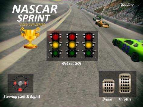 Nascar Sprint Gold Cup 3D screenshot 11
