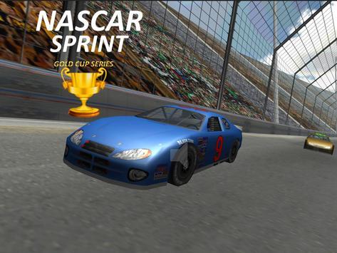 Nascar Sprint Gold Cup 3D screenshot 1