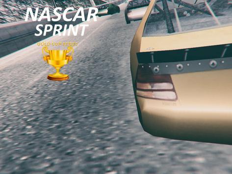 Nascar Sprint Gold Cup 3D screenshot 4