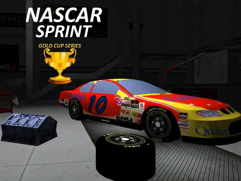Nascar Sprint Gold Cup 3D screenshot 6