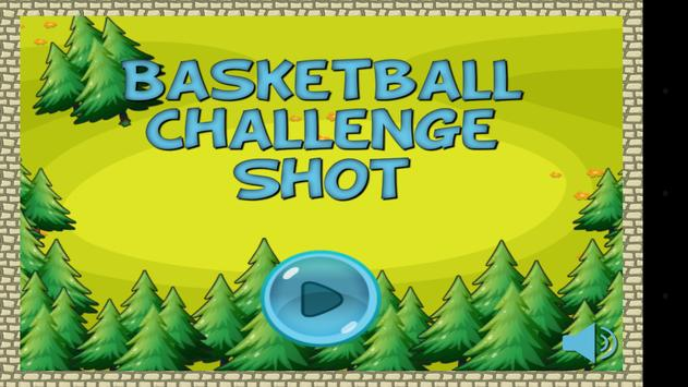 Basketball Challenge Shot poster