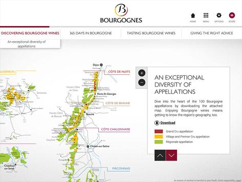 Discovering Bourgogne wines screenshot 4
