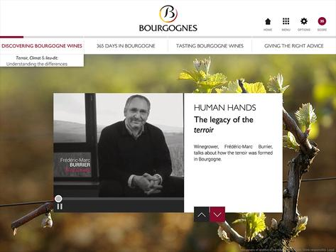 Discovering Bourgogne wines screenshot 3