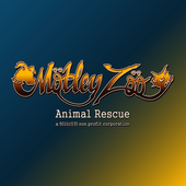 Motley Zoo icon