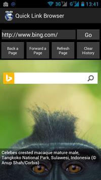 Quick Link Browser screenshot 3